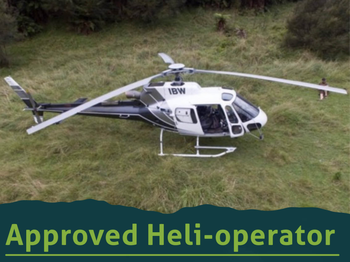 HELI RESOURCES 2